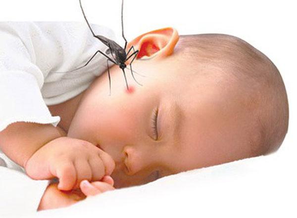Muỗi rất nguy hiểm cho trẻ nhỏ