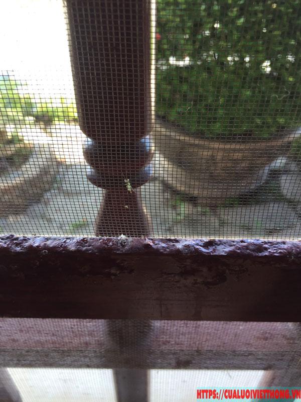 Nguyên nhân gây hư hỏng cửa lưới chống muỗi