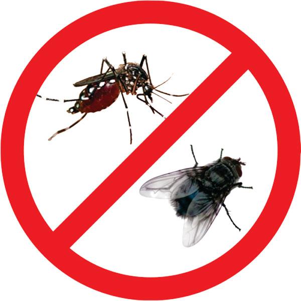 Cửa lưới chống côn trùng cho nhà bếp