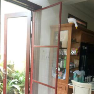 Cửa lưới ngăn côn trùng dạng lùa Sài Gòn