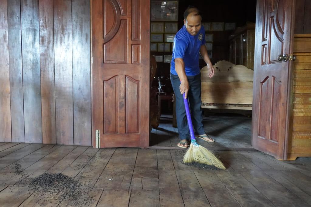 Dọn dẹp sau khi tiêu diệt bọ đậu đen