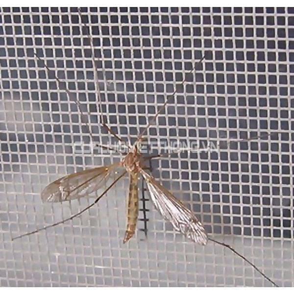 cửa hàng bán lưới chống côn trùng uy tín