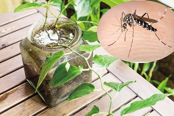 Cửa lưới chống muỗi inox