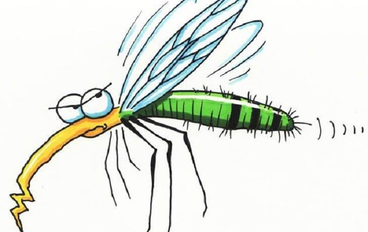 muỗi đốt lòng bàn chân