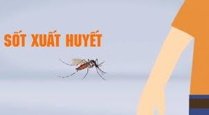 Cách chống muỗi tại nhà
