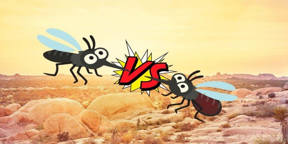 chống muỗi bằng cách nào
