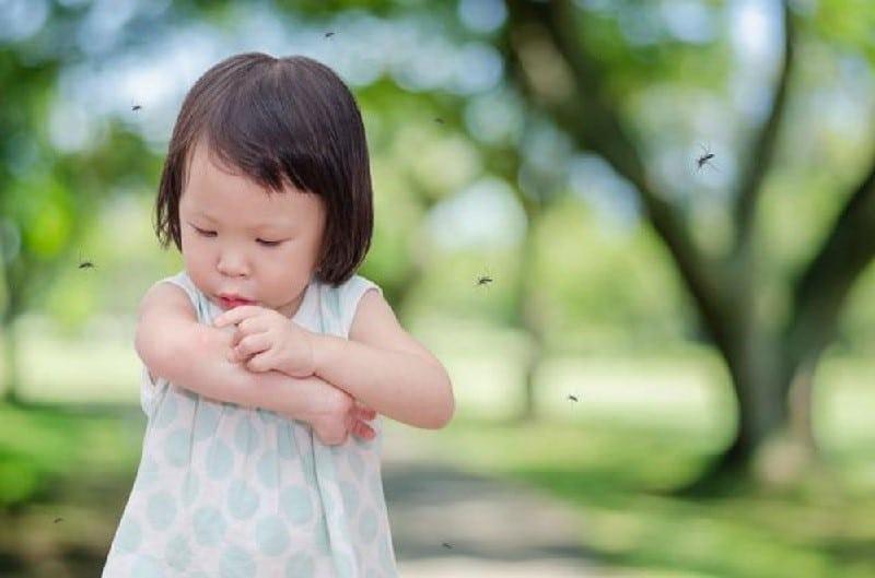 Muỗi cắn em bé